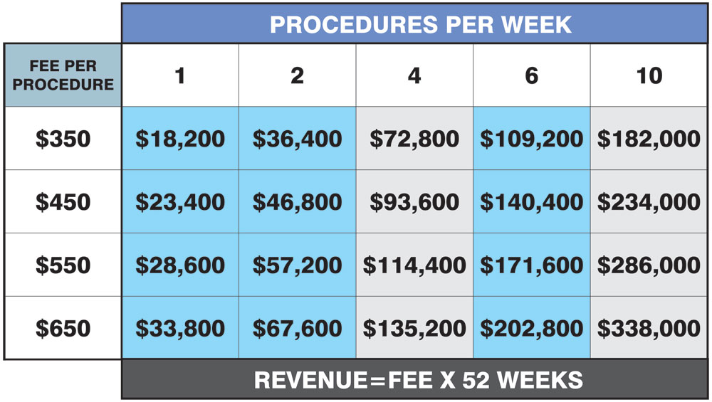 Table showing revenue breakdown for permanent micropigmentation procedures